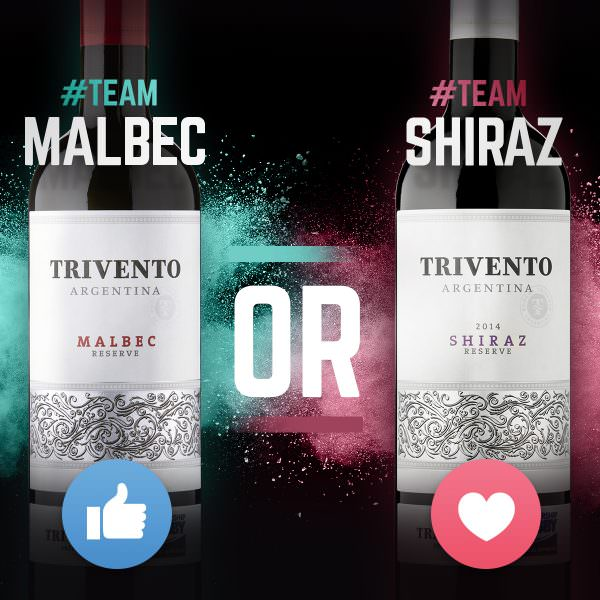 170202-trivento-shiraz-vs-malbec02